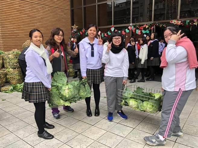 高麗菜菜價大跌,稻江護家師生及家長為幫助菜農,舉行「校園高麗菜愛心大方送」活動。(校方提供)